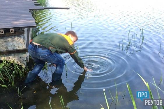 Воду Фабричного пруда в Реутове проверяют на рыбопригодность. Клуб «Время провождение — рыбалка» готовится запускать в водоём щуку, окуня, плотву и карася. ПроРеутов