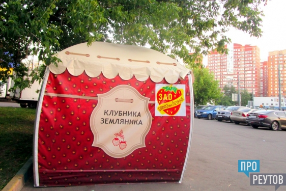 Насчёт клубнички: обзор сезонных ягод в Реутове/ В какую цену ягодка и откуда её к нам везут? ПроРеутов
