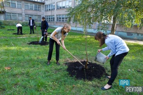 Вот мы деревце сажали